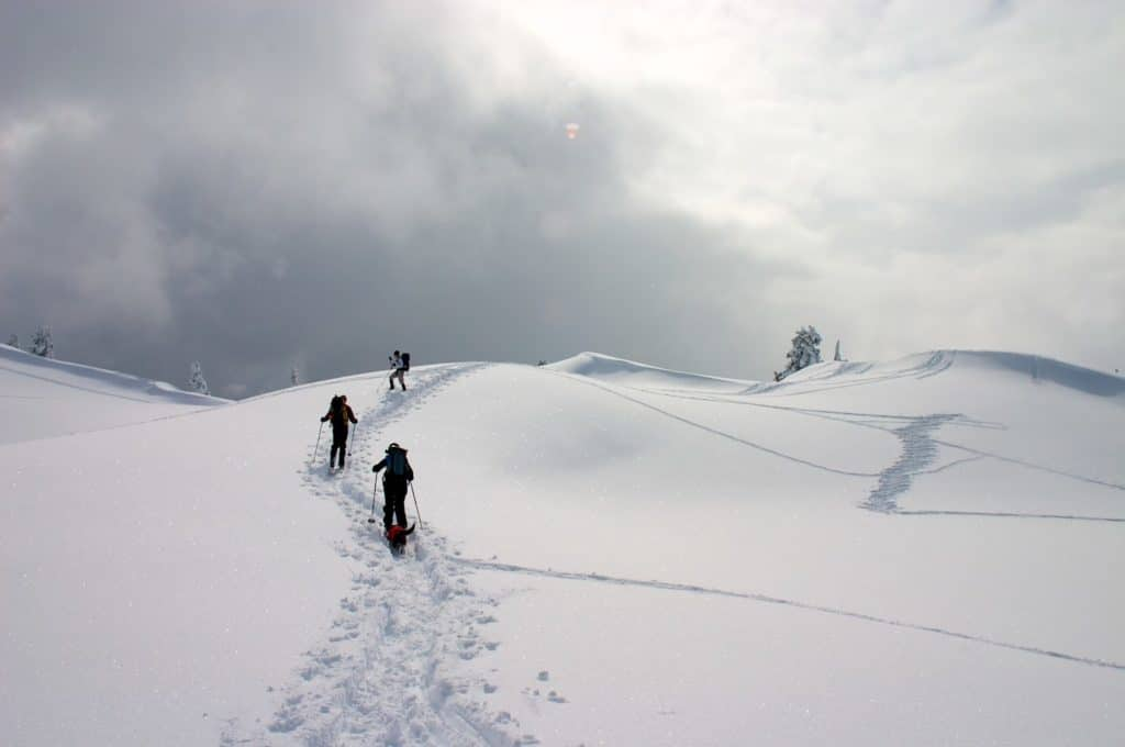 3 skiers climbing on the snowy mountains