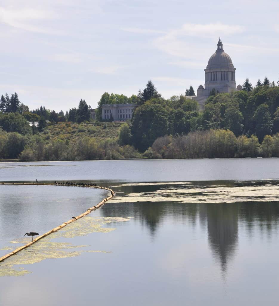 Capitol Lake in Olympia. Facing Capitol Building